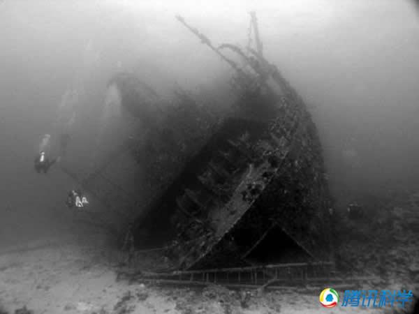 埃及红海Giannis D号